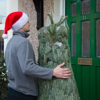 christmas-tree-delivery